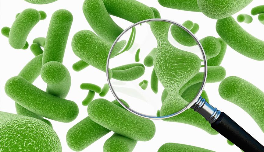 Пробиотично почистване и хигиена. Основни положения - част 3