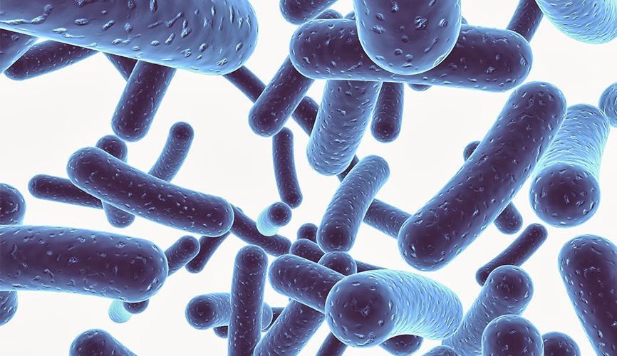 Пробиотично почистване и хигиена. Основни положения - част 1