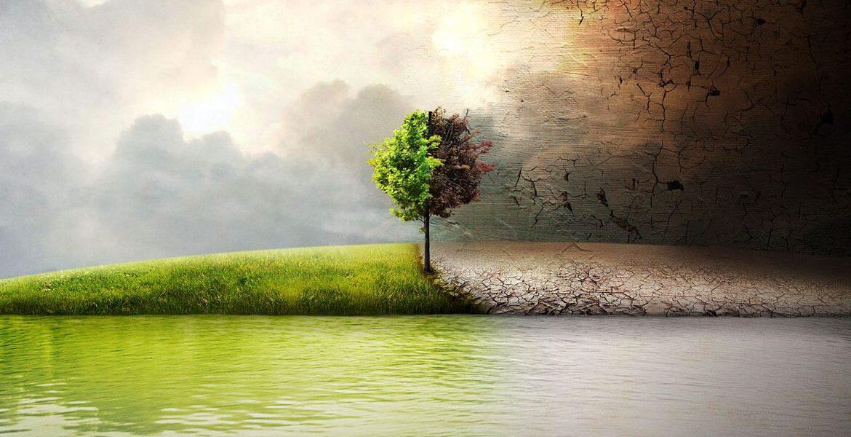 природата около нас - Ecocleaner