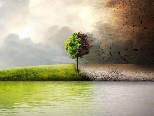 Природата около нас и как можем да я опазим