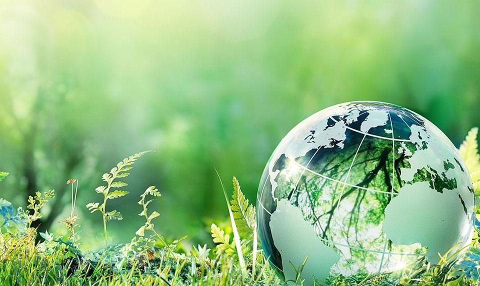 Ecocleaner - екологични почистващи препарати