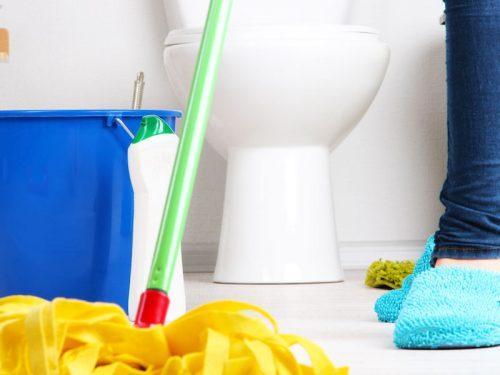 Пролетно почистване на банята и тоалетната с Еcocleaner