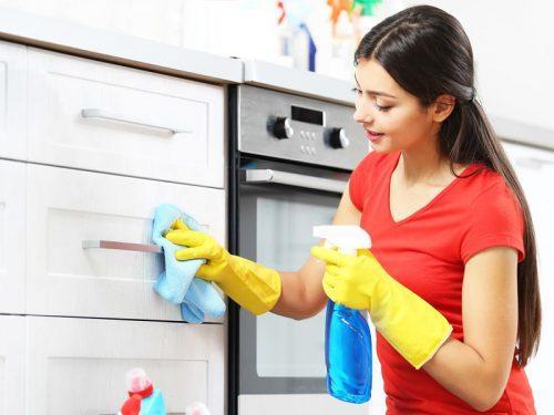 Пролетно почистване на кухнята с Еcocleaner